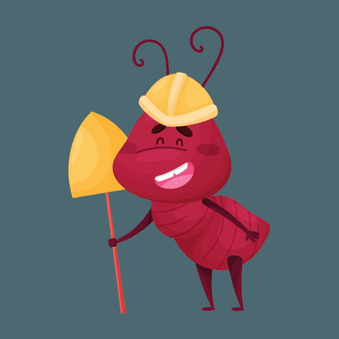 Termite Treatment Camperdown